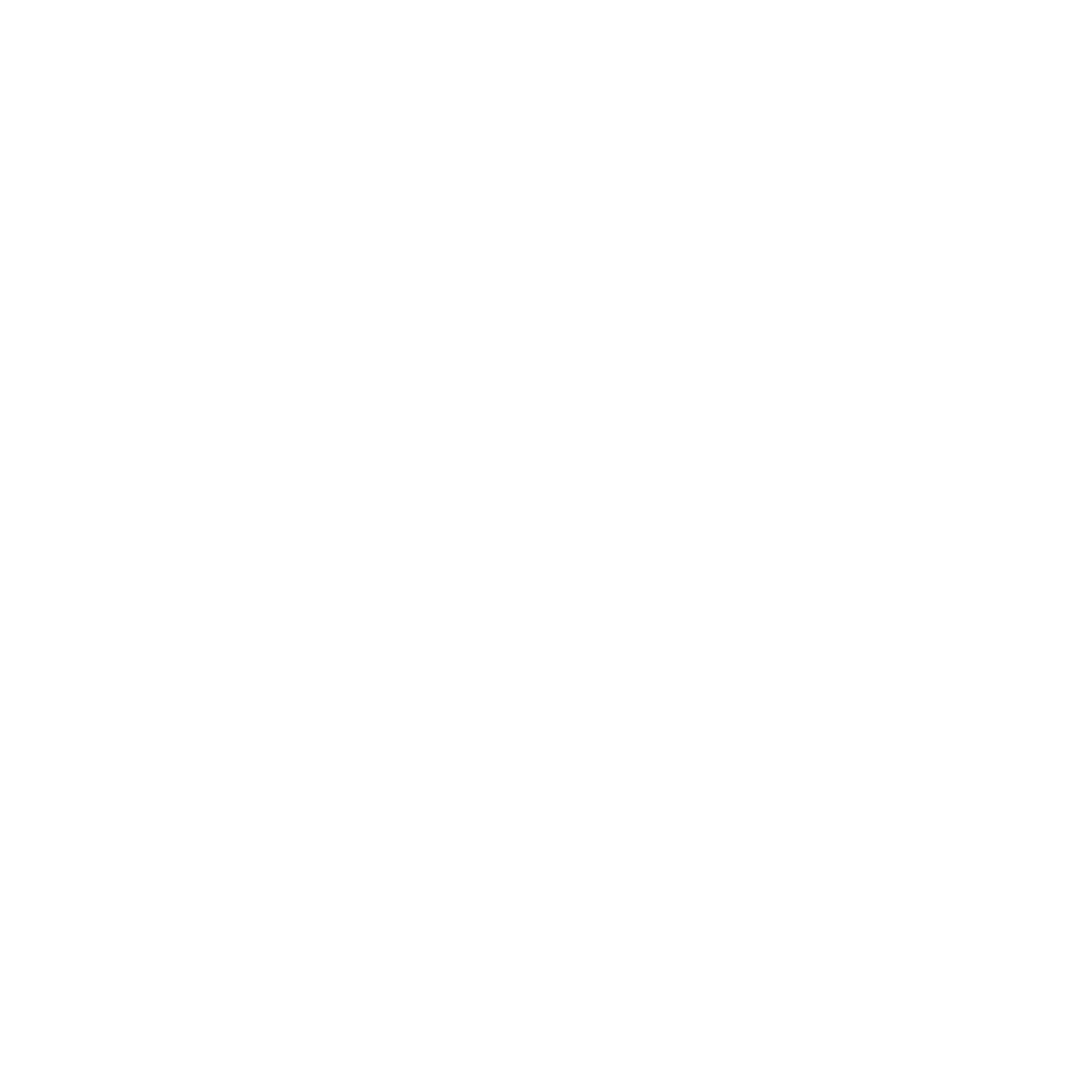Mr. Excursions